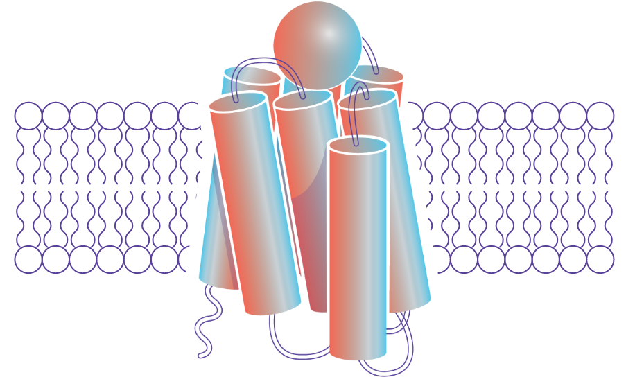 proprietary melanocortin receptor agonists